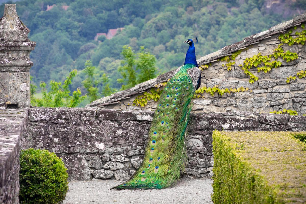 Marqueyssac Gardens, Dordogne, France