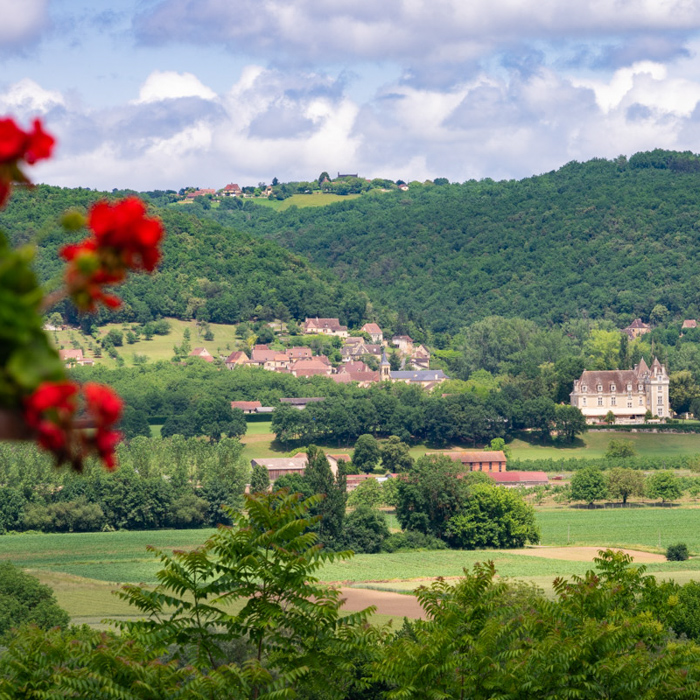 A few more from Dordogne