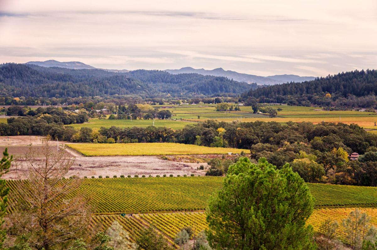 Sterling Vineyards, Napa Valley