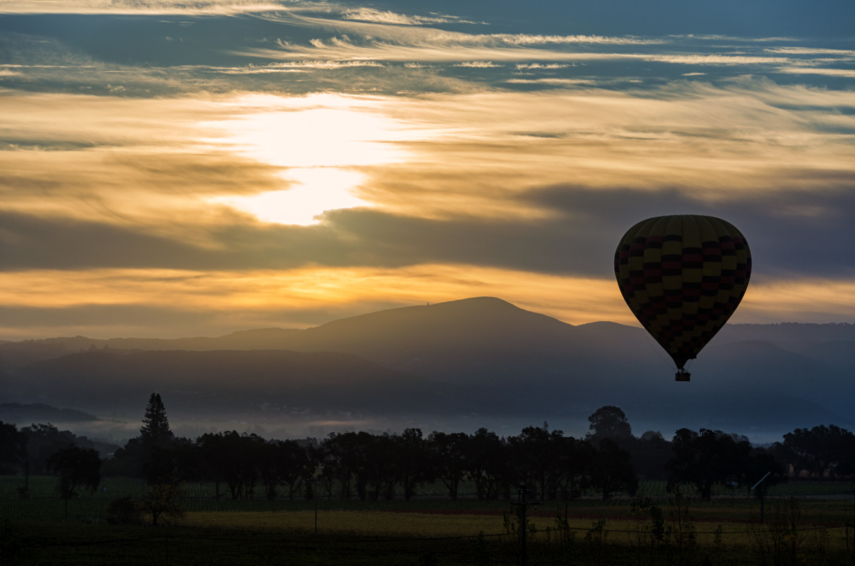 Balloons over Napa Valley